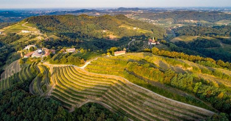 BizTravel: Friuli Venezia Giulia,terra di grandi vini, meta sicura, sostenibile e raggiungibile