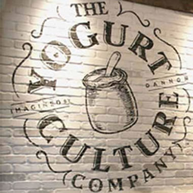 The Yogurt Culture Company