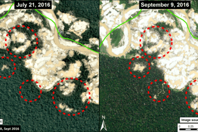 Deforestation within Tambopata National Reserve between July (left panel) and September (right panel) 2016. Red circles highlight areas of major deforestation. Source: MAAP.