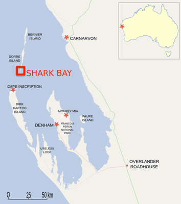 Area studied: Dorre Island and Shark Bay off the coast of Australia. Map: ESA and Wikipedia.