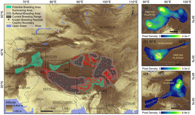 The map shows the potential breeding habitats of the black-necked crane. From Han et. al, 2017.