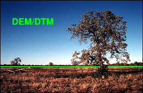 dem-DTM