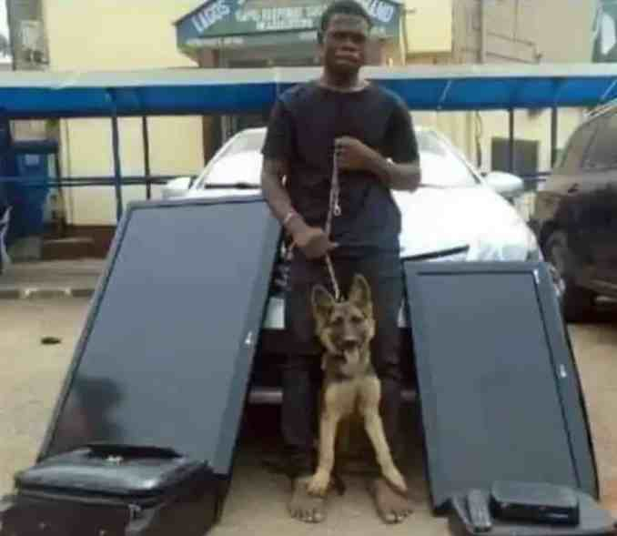 Thief Arrested For Stealing Household Items Including Security Dog