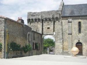 gite-grappe-or-aubigné-sur-layon