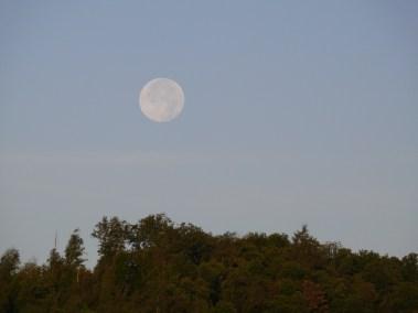 Coucher de la pleine lune
