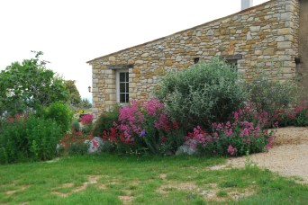 Jardin devant terrasse