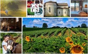 www.tourisme-gers.com