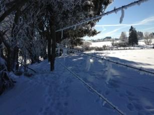 fagnes neige hiver(9)