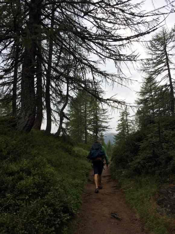 sentieri in alpe devero che portano al lago di devero