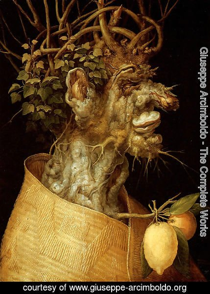Giuseppe Arcimboldo The Complete Works The Winter
