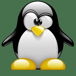Linux : Cos'è e perchè usarlo!