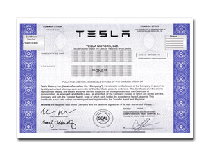 One Real Share of Tesla Motors Inc Stock in 2 Minutes ...