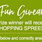 Stoneberry Summer Fun Giveaway