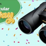 Birds And Blooms Nikon Binocular Giveaway