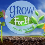 LIVEs Grow For It Travel Trivia Sweepstakes
