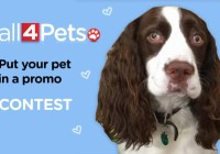 Put Your Pet In A Promo Contest