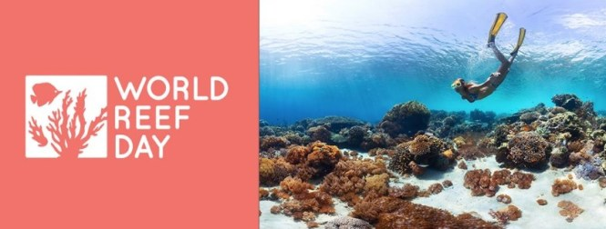 World Reef Day 2019 Sweepstakes