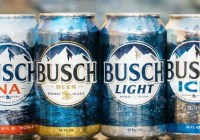 Busch Beer And Big Buck Hunter Arcade Unit Sweepstakes