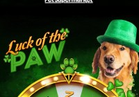 Pet Supermarket Luck Of The Paw Instant Win Game Sweepstakes