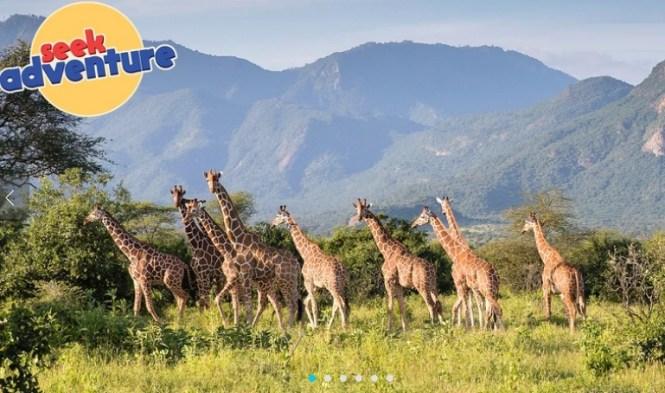 Omaze Kenya Trip Sweepstakes