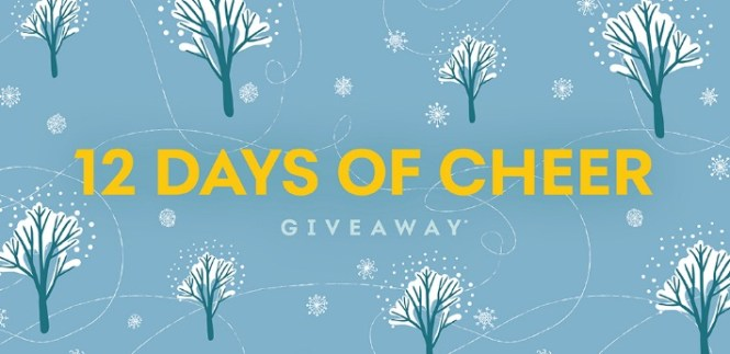 Synchrony Bank Synchrony 12 Days Giveaway