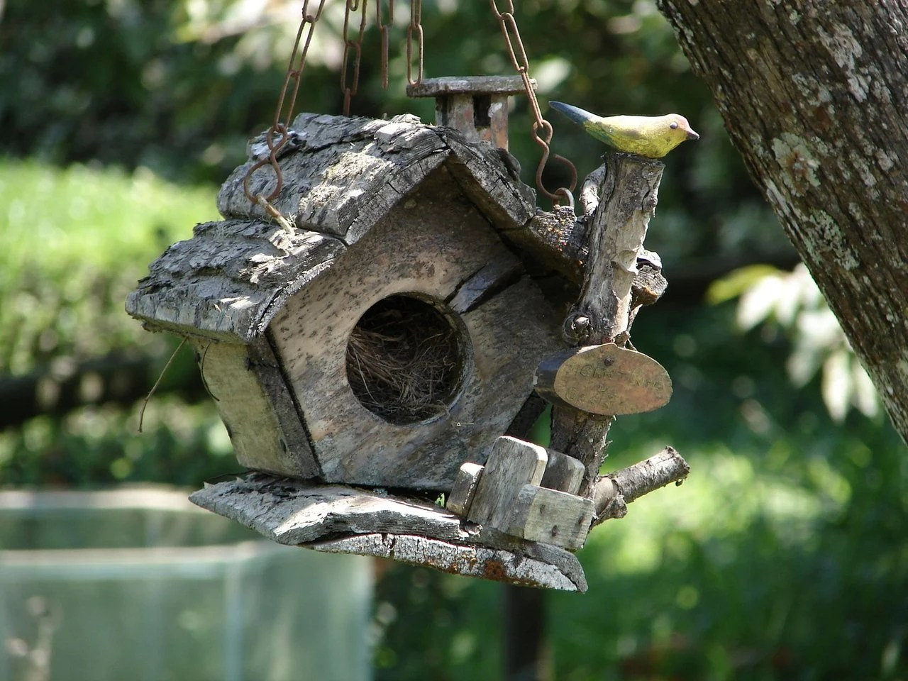 what kind of wood should I use to build a birdhouse