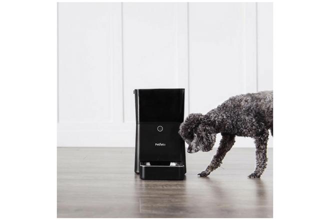 Este dispositivo puede alimentar a tus mascotas en verano