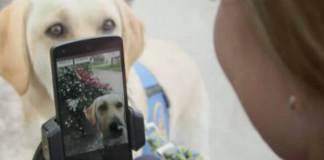 Voice Access la nueva app de Google lanza app de control de voz para personas con movilidad reducida