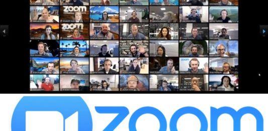 Pantallazo de videoconferencia a través de Zoom