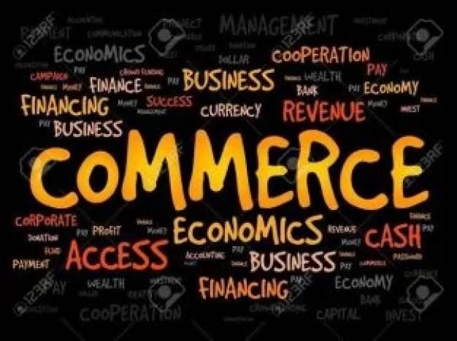 Commerce MCQ 2021