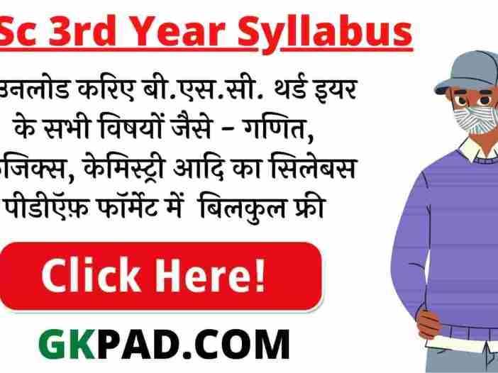 BSC 3rd Year Syllabus