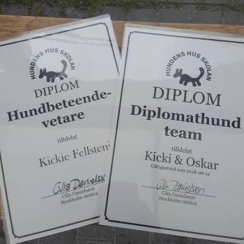 Diplom; Kicki Fellstenius hundbeteendevetare och Kicki & Oskar diplomathundsteam.
