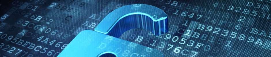Internal Theft & Fraud Investigations
