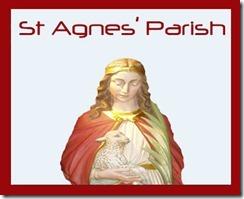 agnes-logo