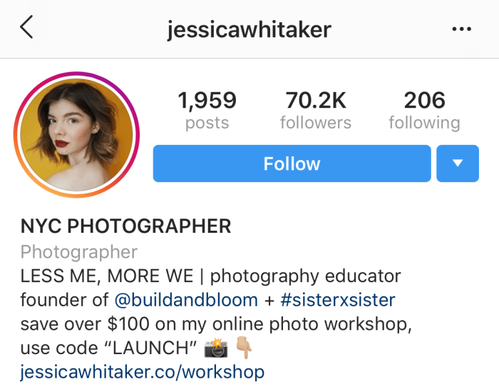 How to write your Instagram Bio like a pro | Instagram Bio Example Image