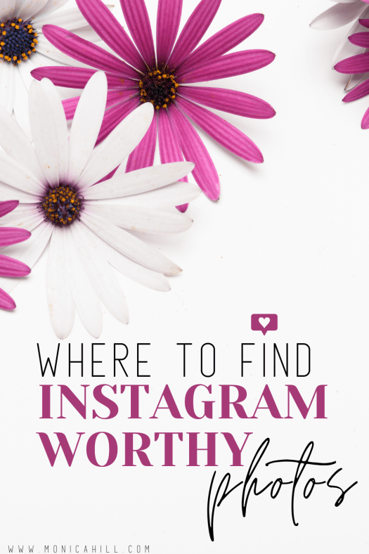 Where to find Insta worthy photos | These free stock photo websites for business are the photos I use to grow my Instagram. If you want to create that beautiful Instagram feed layout, these stock photo websites are the best for your business! You can also use these free stock photos to design Instagram stories to from your Instagram followers and engagement. For more Instagram tips, free business tools, Instagram engagement, Hashtag ideas, and Instagram bio ideas read glambymoni.com #instagram