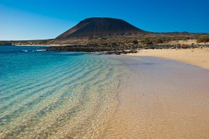 canarie-1
