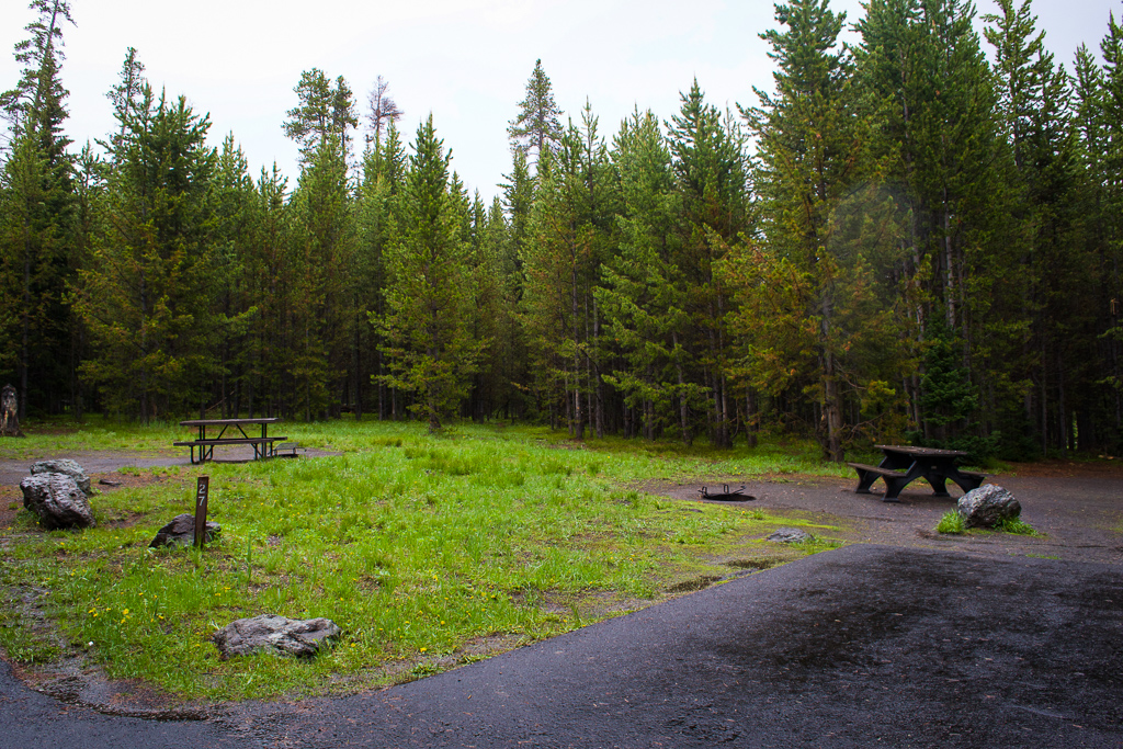 Tent site at Bridge Bay Campground, Yellowstone National Park