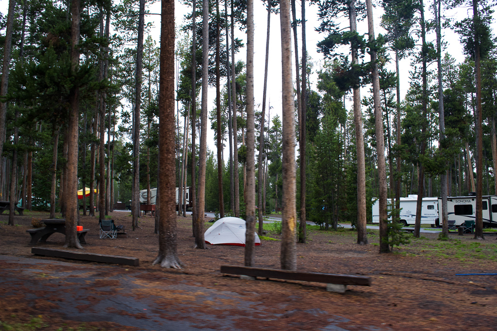 Grant Campground tent camper Yellowstone