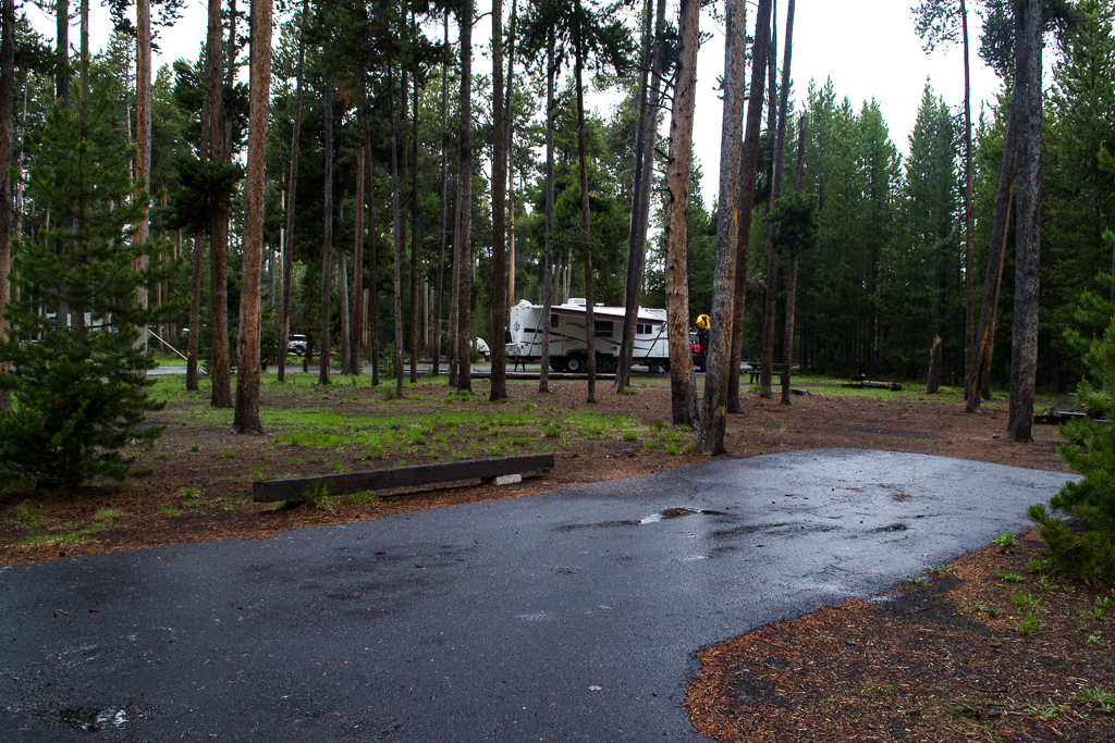 Grant Campground Yellowstone