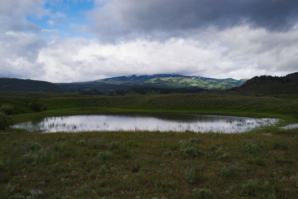 Slough Creek Yellowstone National Park