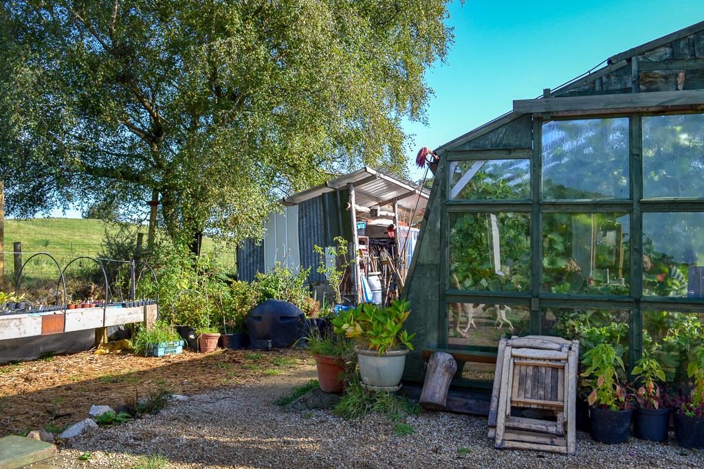 WWOOFing in Ireland organic farm