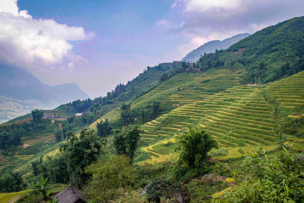 How to Get from Sapa to Cat Ba Island: A Budget Backpacker's Guide