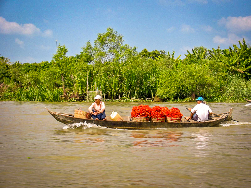 Local Vietnamese farmers selling their produce on a floating market in the Mekong Delta