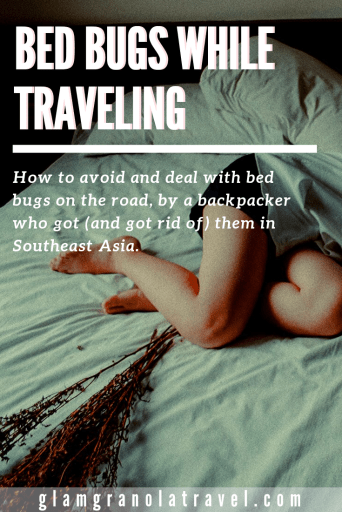 bed bugs while traveling pinterest pin