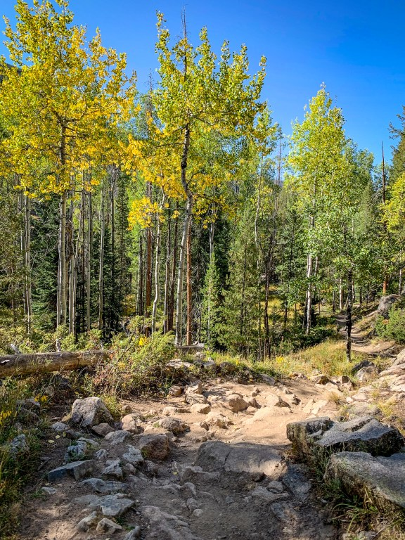 Hiking along the North Inlet Trail in Rocky Mountain National Park
