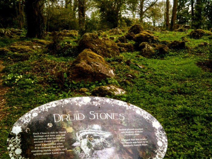 Druid stones in the Blarney Castle grounds