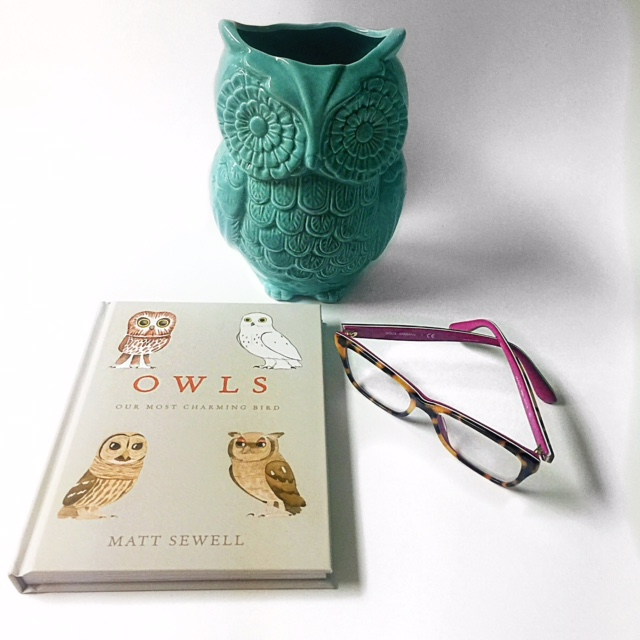 Grab up this owl book - it sells out in a hot minute! Take this book home with you because its that ahhhhmazing! GlamKaren.com
