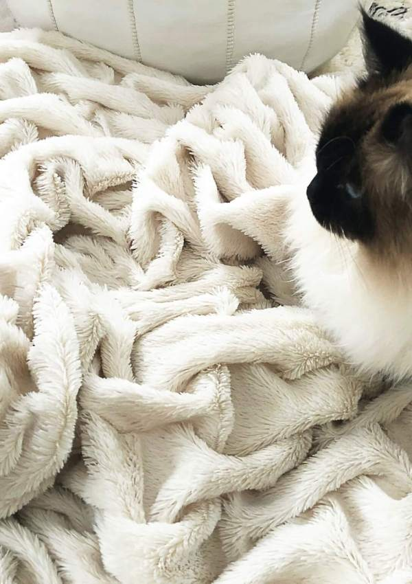 Snuggle Up: The Best & Coziest Blankets! (because brrrrrr…)