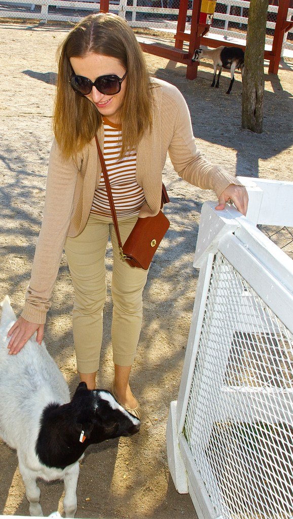 Beige and Brown - Fall Outfit Idea